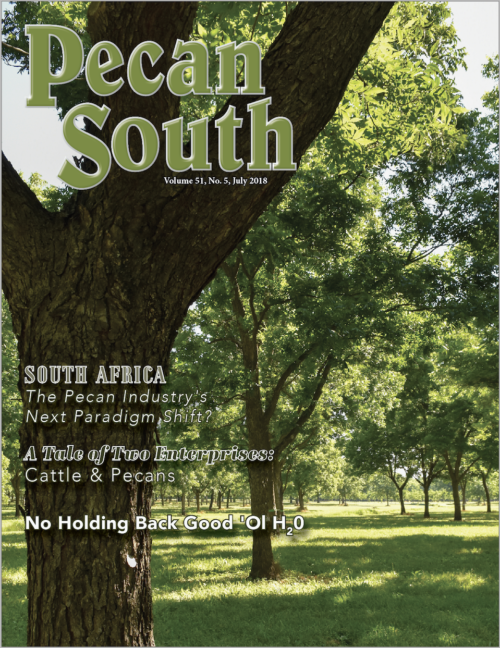 Sample Pecan South Issue Cover