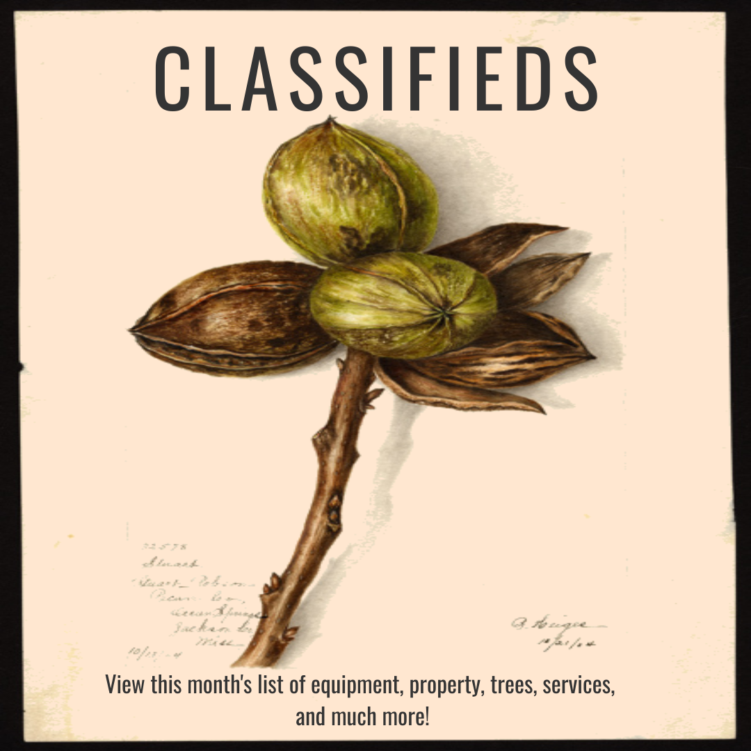 Image for the classifieds found in the magazine.